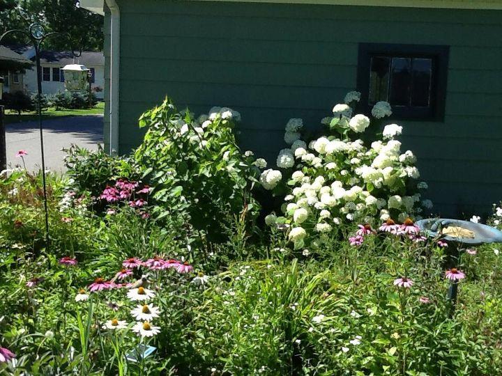 garden ideas cottage thrifty finds, container gardening, flowers, gardening