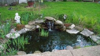 q waterfall fountain ponds, outdoor living, ponds water features, Our self contained self built garden pond with waterfall
