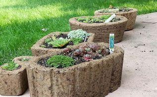 succulents hypertufa planters, container gardening, gardening