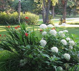Some Views Around My Gardens Zone 5 Ontario Canada, Flowers, Gardening,  Landscape,