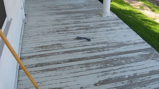 q decks painting cleaning tips, decks, diy, home maintenance repairs, painting, Before