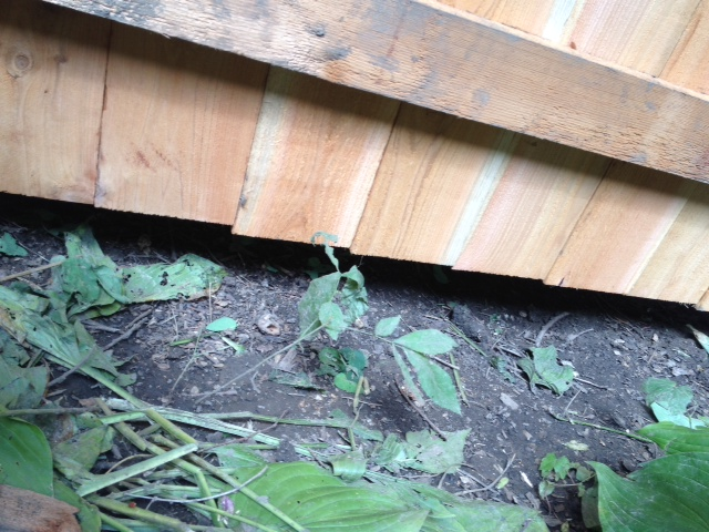 woodworking correcting poorly installed fence, fences, home maintenance repairs, how to, woodworking projects, Shows lower rail not in correct place at bottom of boards and gap between boards and fence