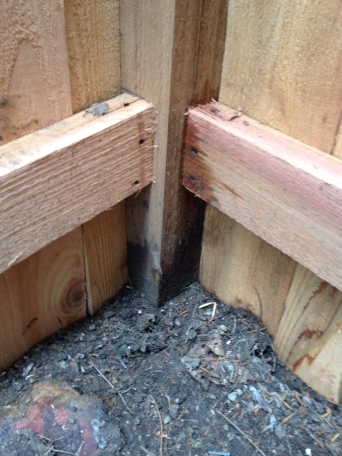 woodworking correcting poorly installed fence, fences, home maintenance repairs, how to, woodworking projects, Bottom corner shows rail in wrong place poor cuts and not flush This is one place there is no gap
