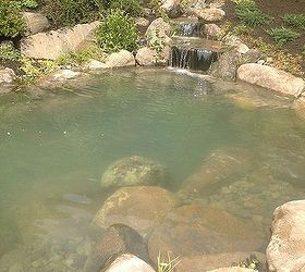 Turn Your Yard Into a Vacation Destination With a Recreational Pond