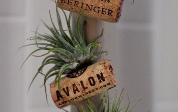 Air Plant Wine Bottle Cork Magnets