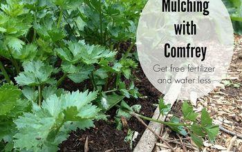 gardening tips comfrey mulching guided, gardening, landscape