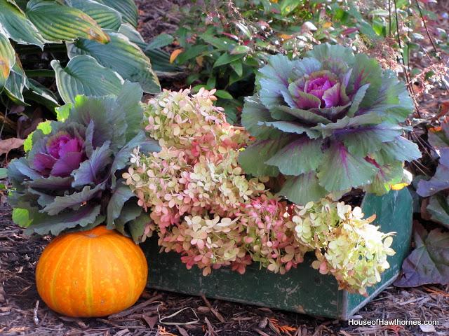 garden ideas centerpiece fall toolbox, container gardening, flowers, gardening, hydrangea, repurposing upcycling