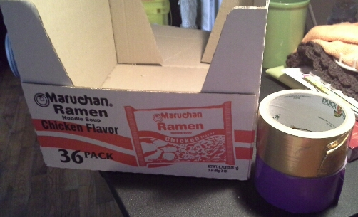 project 1 ramen noodle box not anymore, crafts, repurposing upcycling, storage ideas, Perfect size shape for file folders