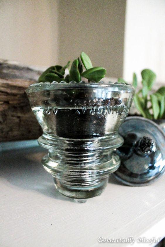 succulents planter antique glass insulator, gardening, succulents