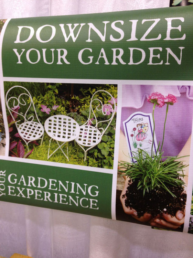 how to plant a fairy garden, container gardening, flowers, gardening