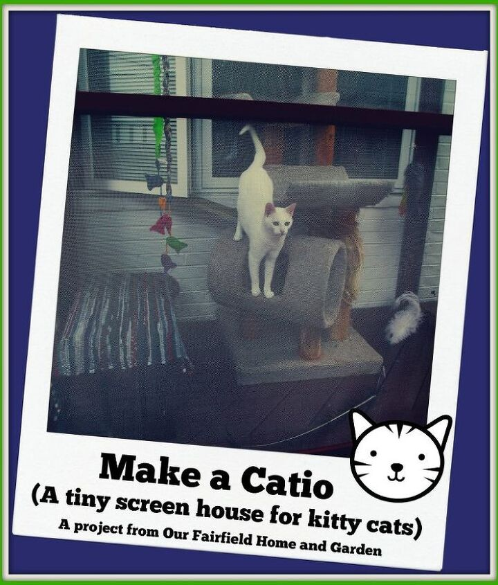 build a catio a tiny screen house for kitty cats, decks, diy, patio, pets animals, woodworking projects