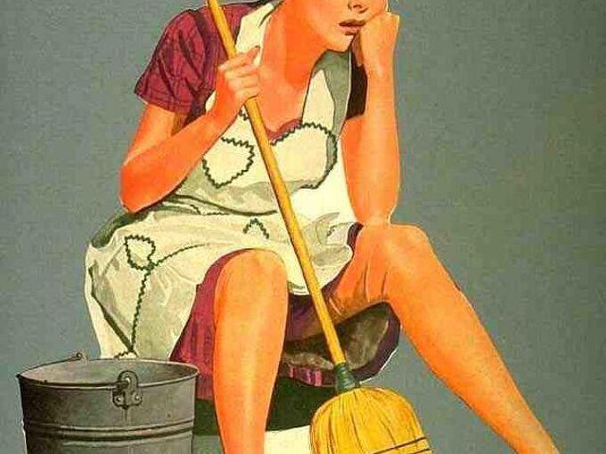 hardwood floors cleaning instructions tips, cleaning tips, flooring, hardwood floors, Cleaning Wood Floors