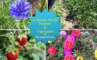 gardening flowers vegetables kentucky tour, flowers, gardening