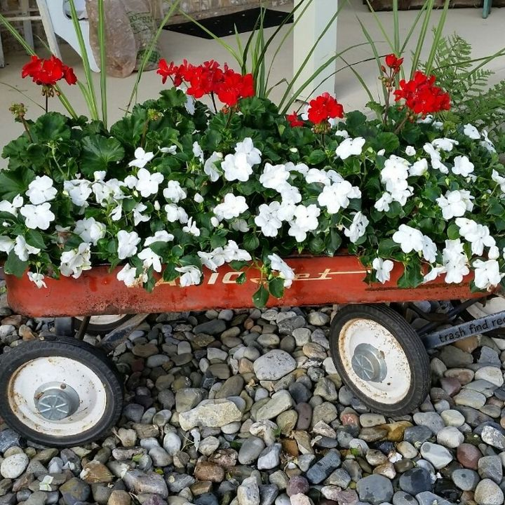my finds for flowers using repurposed rustic reused reclaimed stuff, container gardening, gardening, repurposing upcycling, MY RUSTY RED WAGON FLOWERS