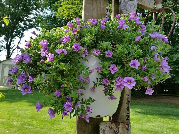 MY ENAMELWARE BUCKET FLOWERS