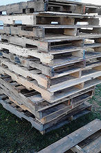 pallet garden shed potting old windows cans, diy, outdoor living, pallet, repurposing upcycling, roofing, woodworking projects, In the beginning