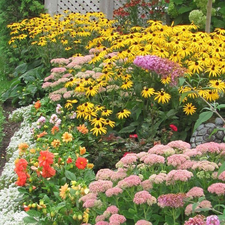 Gorgeous Backyard Garden In Full Bloom