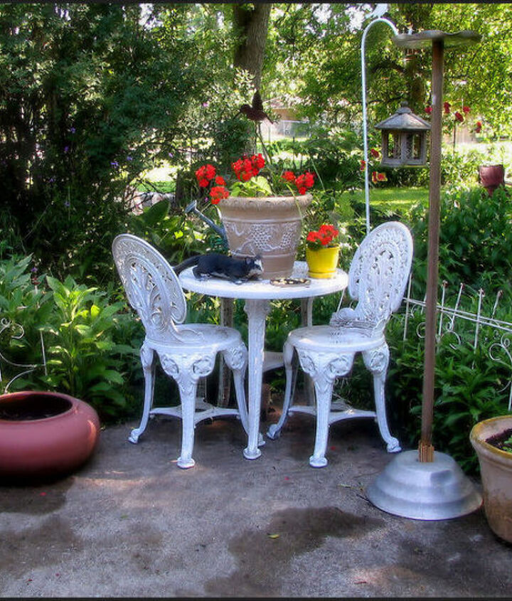 gardening summer flowers highlights backyard, flowers, gardening