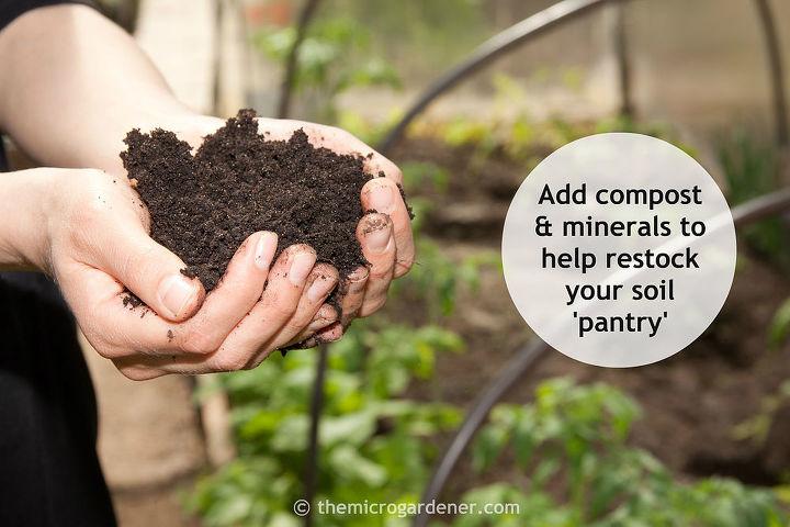 Build your soil for healthy plants & garden