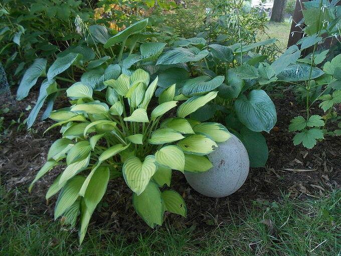 hypertufa garden orb basketball flat details, concrete masonry, gardening, landscape, repurposing upcycling