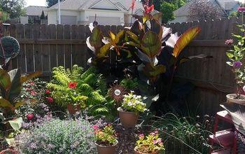 garden patio updated recovered, gardening