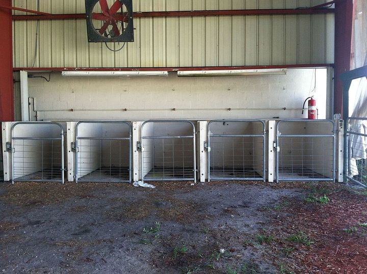 Help Me Hide These Pig Pens For Funky Art And Vintage Show