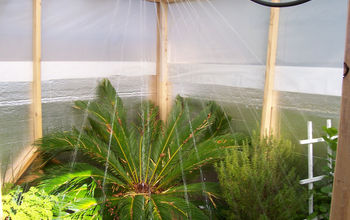 """Oui Built A Greenhouse For $142.00"" 