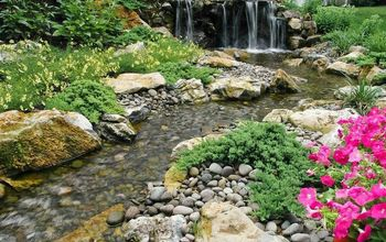 landscaping reservoir aquascape rainxchange, landscape, outdoor living, ponds water features, Backyard Wildlife Habitat