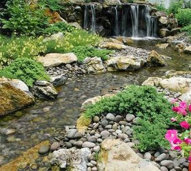 Landscaping Reservoir Aquascape Rainxchange, Landscape, Outdoor Living,  Ponds Water Features, Backyard Wildlife ...