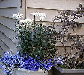 Gardening Ideas Upcycled Planters Repurposed Unique, Gardening