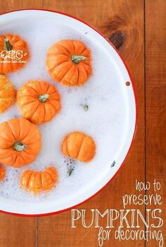 how to preserve pumpkins for fall decorating, cleaning tips, outdoor living, painting, seasonal holiday decor