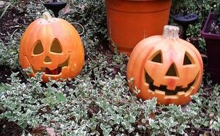 solarizing your halloween pumpkins take 2, gardening, halloween decorations, lighting, repurposing upcycling, seasonal holiday decor