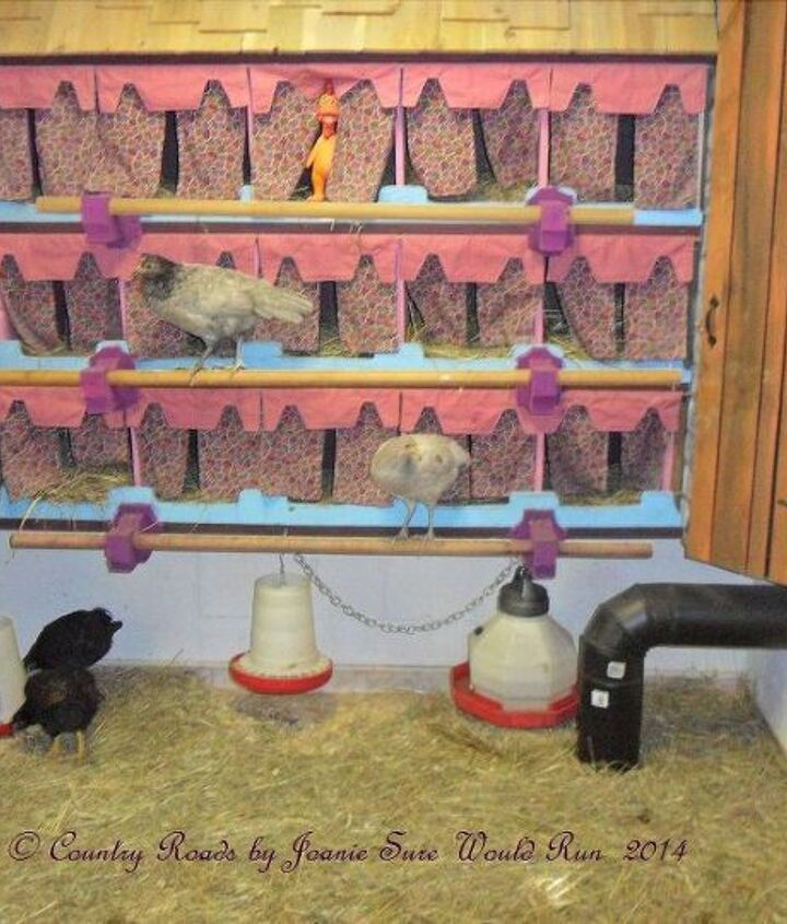 Completed living area with pullets.