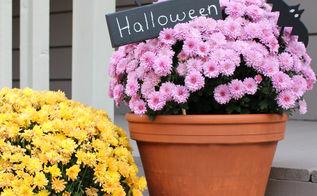 halloween decorations chalkboard wood bats planter, chalkboard paint, container gardening, crafts, gardening, halloween decorations, seasonal holiday decor
