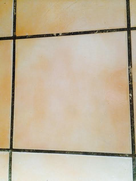 cleaning tips grout tile, cleaning tips, how to, tiling, Before it looks like black grout