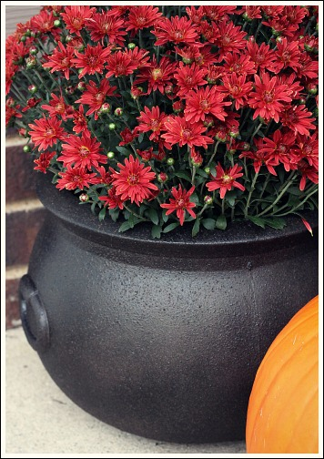 halloween decorations take a realistic and cool makeover, halloween decorations, seasonal holiday decor