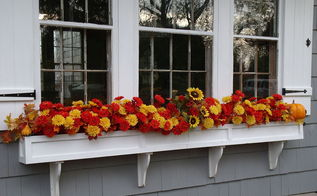 flowers window box fall decoration, seasonal holiday decor