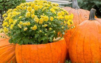 Top 9 Halloween Pinterest Pumpkin Ideas