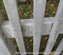 fences cleaning tips bleach spraying home, cleaning tips, fences, home maintenance repairs, Here s the proof