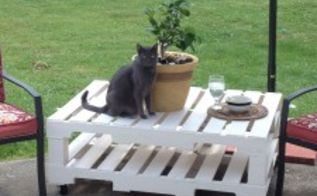 diy pallet patio table build, diy, how to, painted furniture, pallet, repurposing upcycling, My cat Oscar