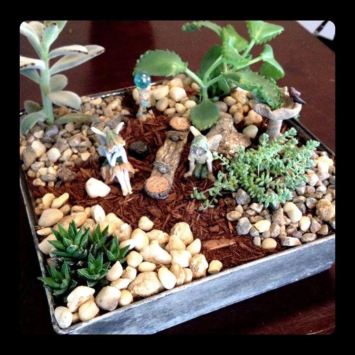 indoor fairy garden, crafts, gardening