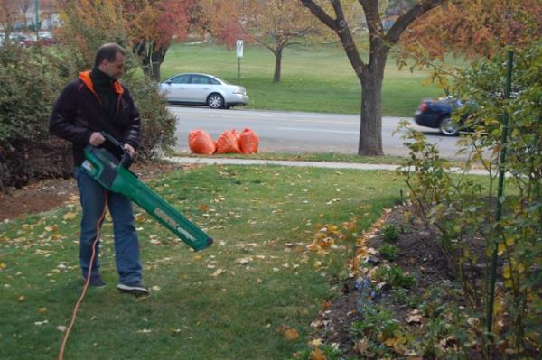 1. Find the Best Leaf Removal Method
