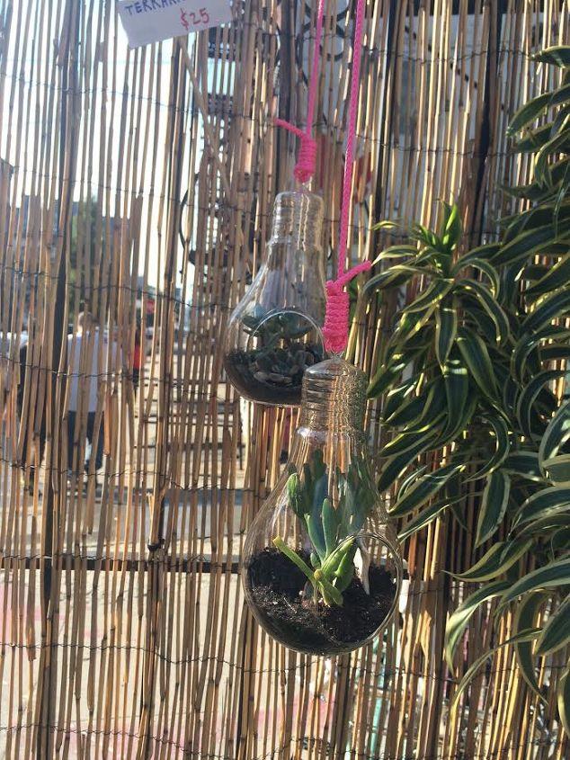 hanging a succulent terrarium, bedroom ideas, succulents, terrarium, wall decor