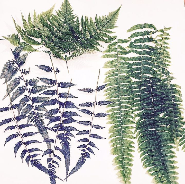 how to make fern printed tea towels, crafts
