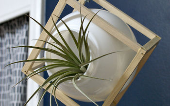 upcycled light globe plant container, diy, home decor, repurposing upcycling, woodworking projects