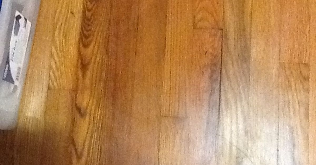 How To Get Urine Stains Out Of Hardwood Floors Meze Blog