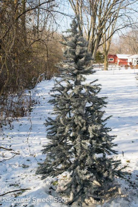 Christmas Tree Spray Snow.Spray Painted Christmas Tree Christmas Tree Hometalk