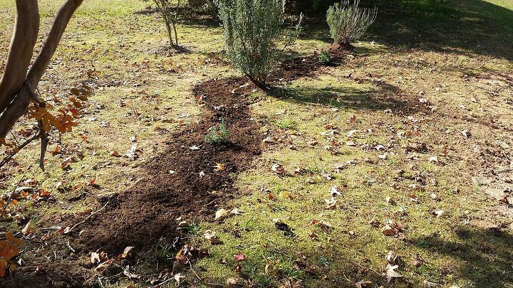mulch piles during all the work for me, gardening, go green