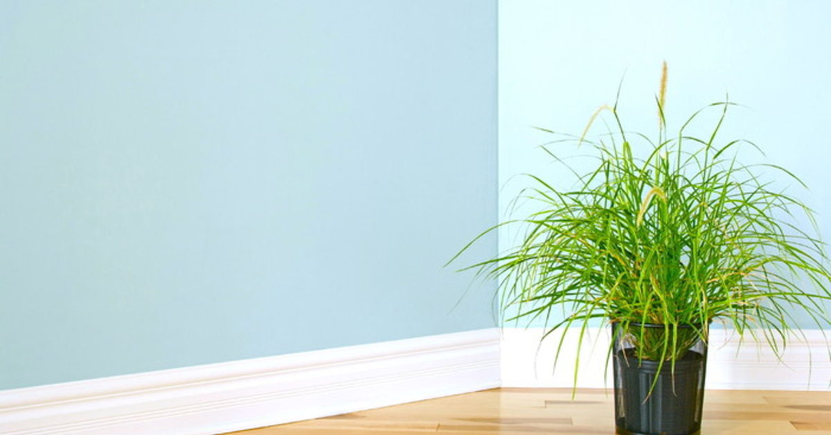 An Easy Way For Baseboard Cleaning Hometalk
