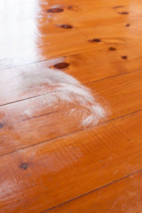 Restore Shine On Wood Floors Hometalk